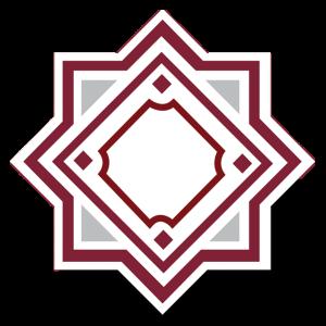 DCI Square Logo